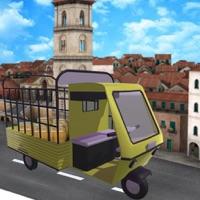 Rickshaw Cargo Transport
