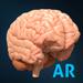 AnatomyAR+ for Merge Cube