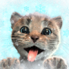 Fox and Sheep GmbH - Little Kitten Adventures  artwork