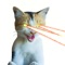 download Laser Cats Animated
