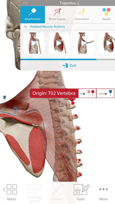 Human Anatomy Atlas 2018 Screenshot