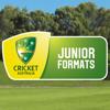 CA Junior Formats