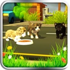 Crazy Cat Simulator Pet World icon