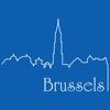 Brussels Travel Guide Offline