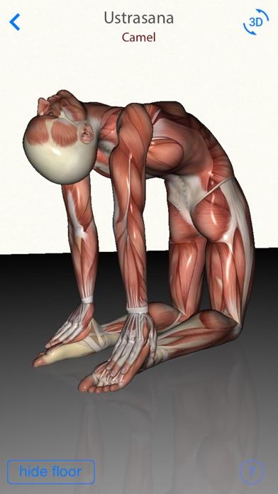 3D Yoga AnatomyScreenshot of 3
