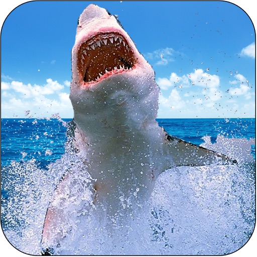 Deadly Wild Shark Hunt Simulator - Great Deep White Shark Attack iOS App