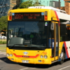 Adelaide Bus