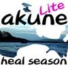 Spring of Akune island Lite