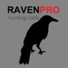 REAL Raven Hunting Calls - 7 REAL Raven CALLS & Raven Sounds! - Raven e-Caller & BLUETOOTH COMPATIBLE