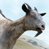 Have You Gone Goat? Simulator Games with Crazy Goats