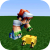 Best Poke Skins for Minecraft PE & PC - Best Collection for Pokemon Go Edtion