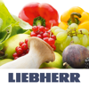 Liebherr BioFresh HD