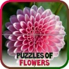 Puzzles of Flowers