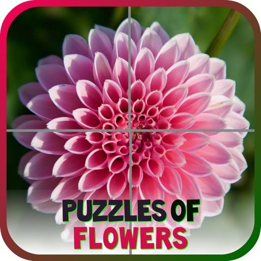Puzzles of Flowers iOS App