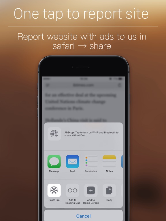 how to put adblock on safari ipad