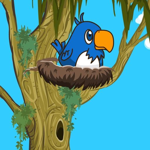 Build the Nest iOS App