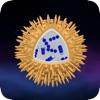 Wissenschaft - Mikrouniversum 3D : Bakterien, Viren, Atome, Moleküle und Partikel