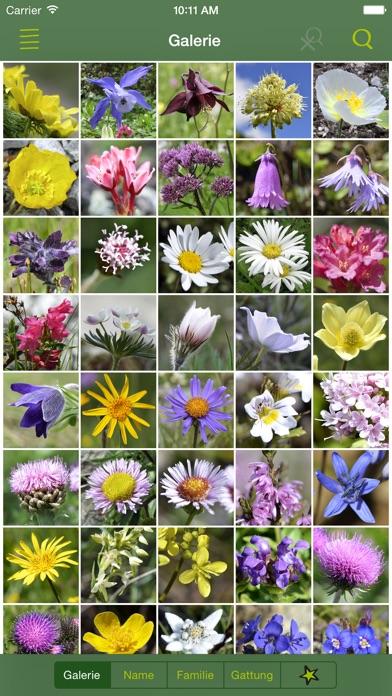 """Alpenblumen Finder – Blumen der Alpen bestimmen"""" im App Store"""