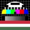 Magyar Televízió a iPad