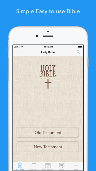 download Daily Bible: Easy to read, Simple, offline, free Bible Book in English for daily bible inspirational readings apps 3
