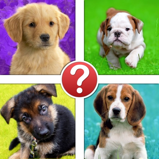 Puppies Pic Quiz - Dog Breeds by Puppy iOS App