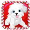 Doggy Dash HD usa dash hd