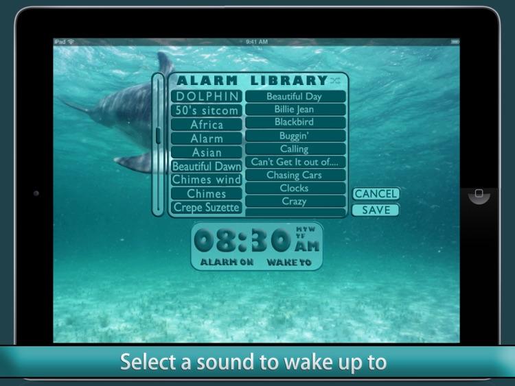Dolphin Alarm Clock by I Hate my Clock Radio