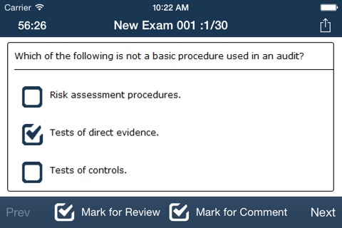 CPA Audit Exam Online Free screenshot 3