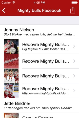 Rødovre Mighty Bulls screenshot 3