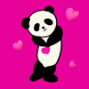 Panda Panda Wallpapers