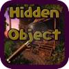 Hidden Object Hot Summer