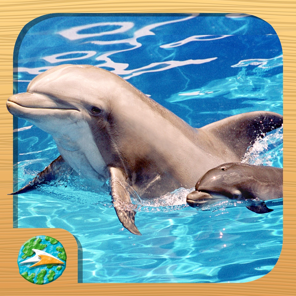 Dolphins, Sharks & Turtles – Ocean Tales from Generation Nature, Empowered by SeaWorld Kids