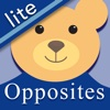 Autism & PDD Opposites Lite