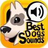 ベスト犬サウンド+