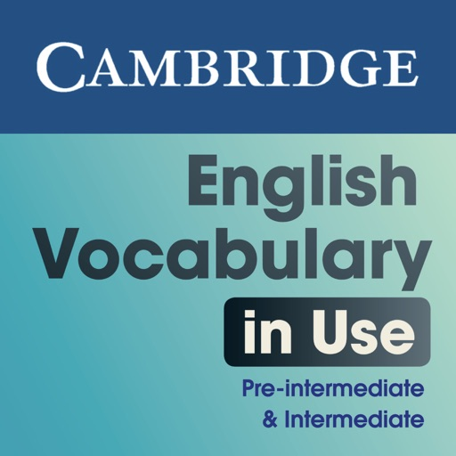 English Vocabulary in Use Pre-intermediate and Intermediate Activities
