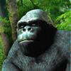 Monkey Arm Wrestling