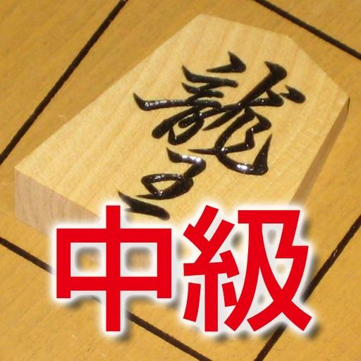 渡辺明の詰将棋 中級編