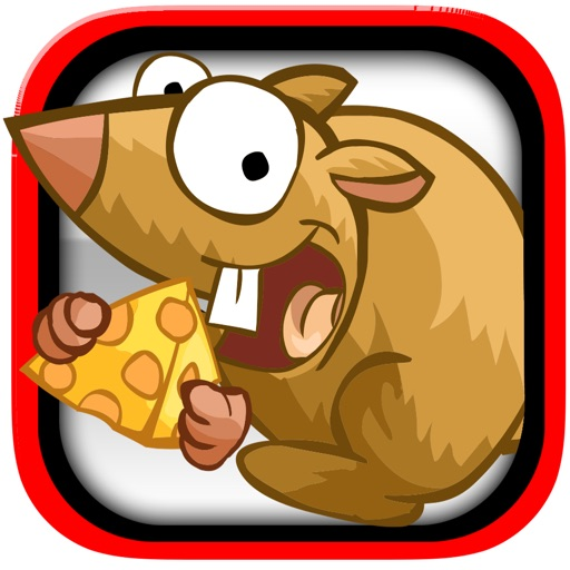 Save The Cheese Mania - New mind challenge speed game iOS App