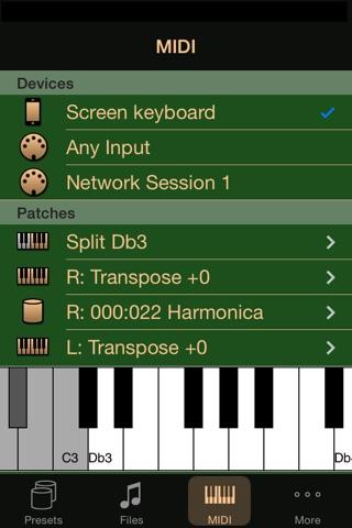 IPlayMIDI screenshot 4