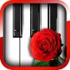 最浪漫的鋼琴
