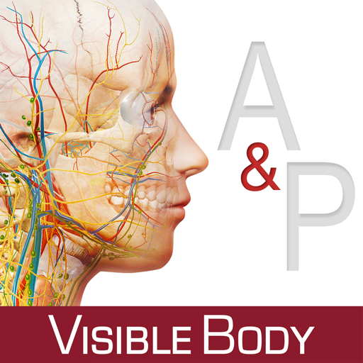Anatomy & Physiology: An Introduction to Body Structures and Functions