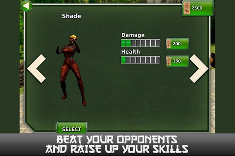 Ninja Revenge: Kung Fu Fighting screenshot 3