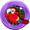 807  Parrot Escape