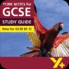 Lord of the Flies York Notes for GCSE 9-1 for iPad