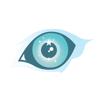 Olhos de Águia