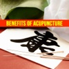 Chinese Acupuncture Therapy - Treatment For Weight Loss