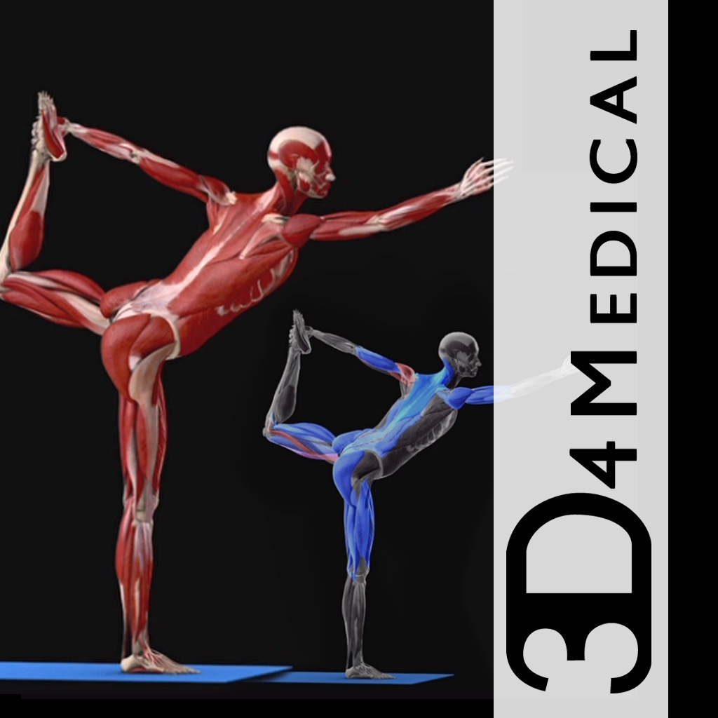iYoga - Premium - iPhone Edition - 3D4Medical.com