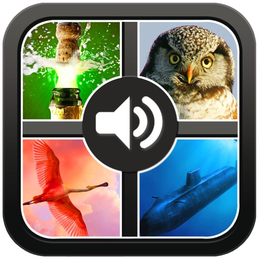 Guess the sound. Great puzzle and word game.150 sounds 400 photos and pics. iOS App