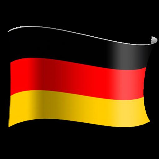 Les Bases de l'Allemand - Niveau B1