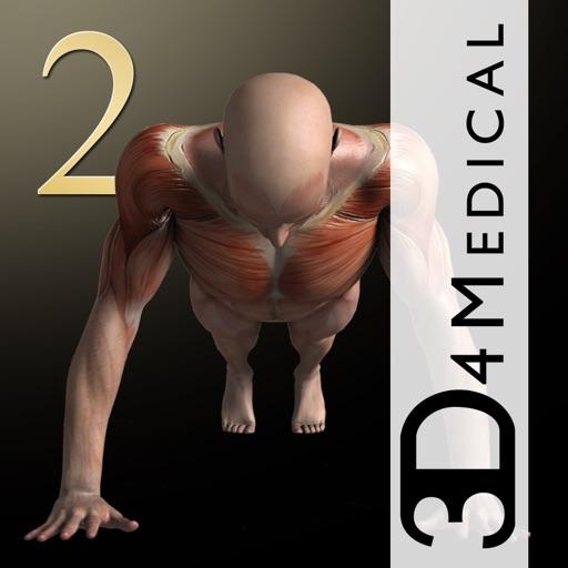 我的肌肉2:iMuscle 2 – iPhone Edition